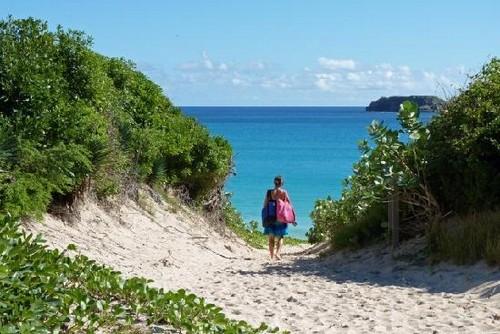 Playa Grande Saline
