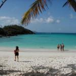 Trunk Bay, la mejor playa de las Islas Vírgenes