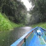 El Parque Nacional Chagres en Panamá
