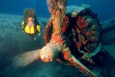 Los mejores lugares para bucear en Aruba