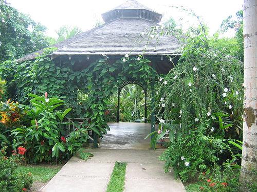 Cranbook Flower, un parque hermoso en Jamaica