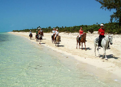 Cabalgatas por la playa en Islas Turcas y Caicos