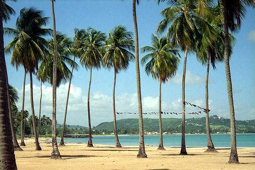 playa luquillo 2