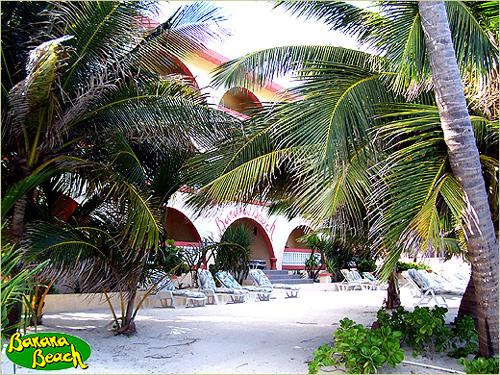 banana beach hotel 2