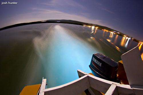 Glistening Waters, aguas luminosas en Jamaica