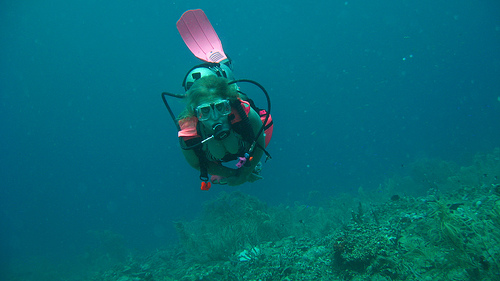 Buceo y snorkel en Granada