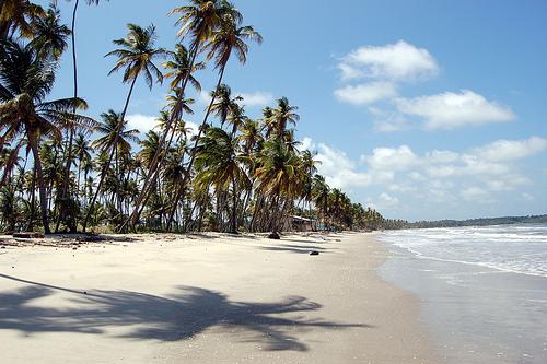 playa manzanilla