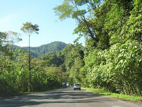 parque nacional braulio