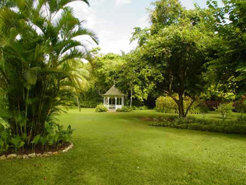 jardin botanico shaw park