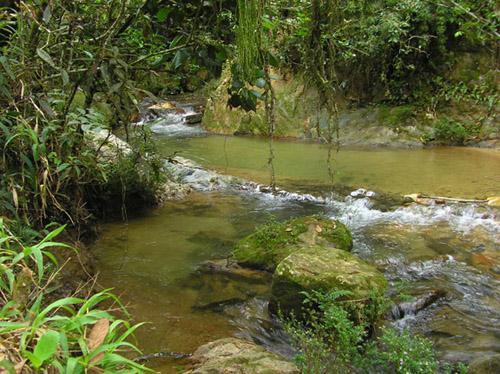 parque nacional bermudez