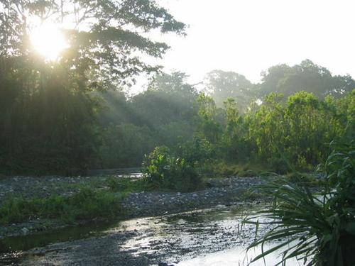 Hitoy Cerere, una reserva agreste en Costa Rica