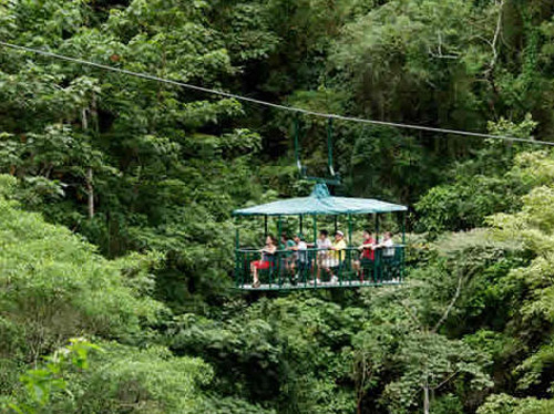 Paseos aéreos en Dominica