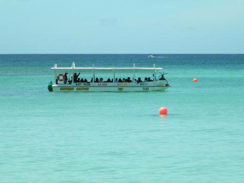 Buccoo Reef, en Tobago