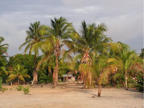 Reserva Natural Galibi
